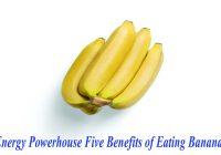 Energy Powerhouse Five Benefits of Eating Bananas